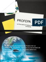 Procuradoría federeal de protección al ambiente