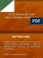 Tema12 Nutricion.ppt