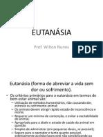 Eutanásia _forma de Abreviar a Vida Sem