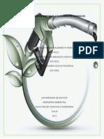 Elaboración de Bioetanol Con Alimentos Orgánicos (7)