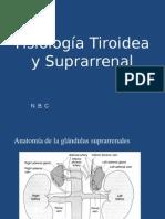 Fisiologia Suprarr y Tiroid 3