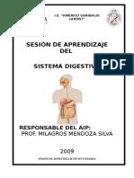 SESION--SISTEMA-DIGESTIVO.doc
