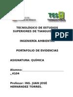 PORTAFOLIO quimica 4104