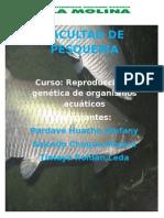 PRODUCCION DE ALEVINOS.doc