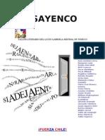 FUERZA CHILE SAYENCO