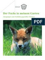 Der_Fuchs