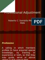 Professional Adjustment Ppt