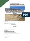 ANALISIS PRELIMINAR DE LA ARQUITECTURA DE LOS ANDENES DE k.docx