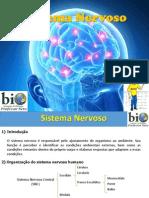 Fisiologia - Sistema Nervoso