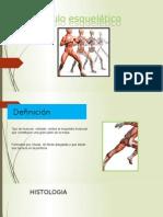 Musculo esquelético.pptx