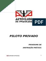 Manual de Piloto Privado