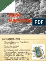 reinoeubacterias-100813002252-phpapp02