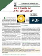 Milho fenologia e cresc.pdf