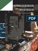 A Metrópole de São Paulo