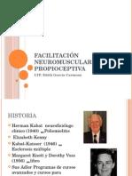 neuroterapia facilitacion neuropropioceptiva