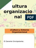 cultura_organizacional3.pptx
