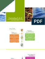 Comolsa-Diapositivas