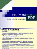 1-piel-y-anexosmedicina2001-1225677272452908-9 (1).ppt