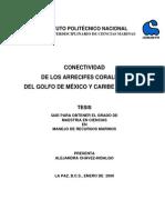 CONECTIVIDADARRECIF.pdf