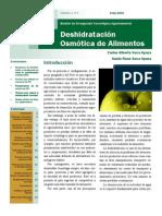 86078234 Deshidratacion Osmotica (1)