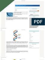 ADN_ Genes y Cromosomas