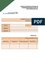 FORMATO Informe Financiero Anual  PEC XV.xlsx
