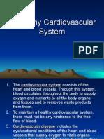 A Healthy Cardiovascular System