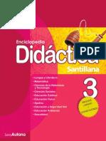 Didactica primaria 3