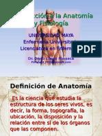 Anatomia Fisiologia UM