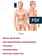 Physiologie Endocrine Partie 2