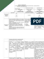 Comparación de Paradigmas Conductuales
