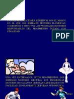 3la Neurofisiologia Del Movimiento (2 Parte)