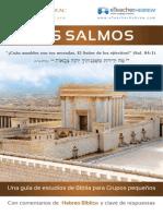 SALMOS ESTUDIO.pdf