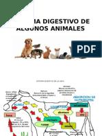 Sistema Digestivo de Algunos Animales