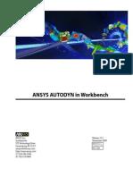 Workbench Autodyn