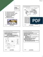 ApiTema03Web.pdf