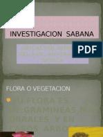 Investigacion Sabana