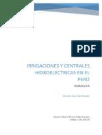 Proyectos de Irrigaciones y Centrales Hidroelectricas en El Peru
