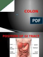 Block Gastro 2012 Lower & Accesory GI Tract