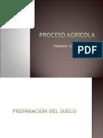 Proceso Agricola