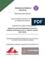 Reporte Practicas Profesionales Austin Power Unidad El Coronel