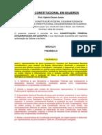 Módulo 1 Preâmbulo Direito Constitucional Em Quadros