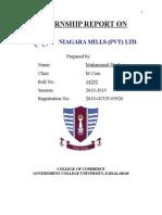 Niagara Internship Report