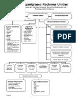 Estructura de La ONU DH