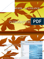 SAP Introduction Presentation