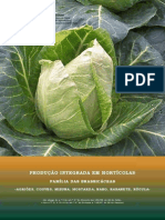 PRODI Brassicaceas 2007
