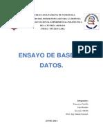 Ensayo de Base de Datos en las Organizaciones