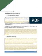 SM Internship report.docx