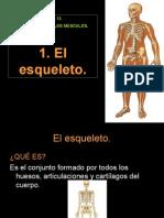 1 El Esqueleto