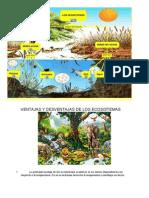 Ventajas y Desventajas de Los Ecosistemas
